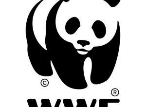 Partenerii nostri-WWF